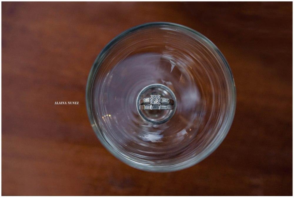 AlainaNunezPhotography.1-8-2016-22
