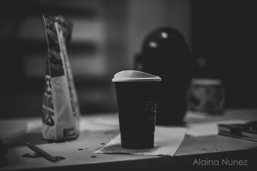 AlainaNunezPhotography.MarchDITL2017WEB-1