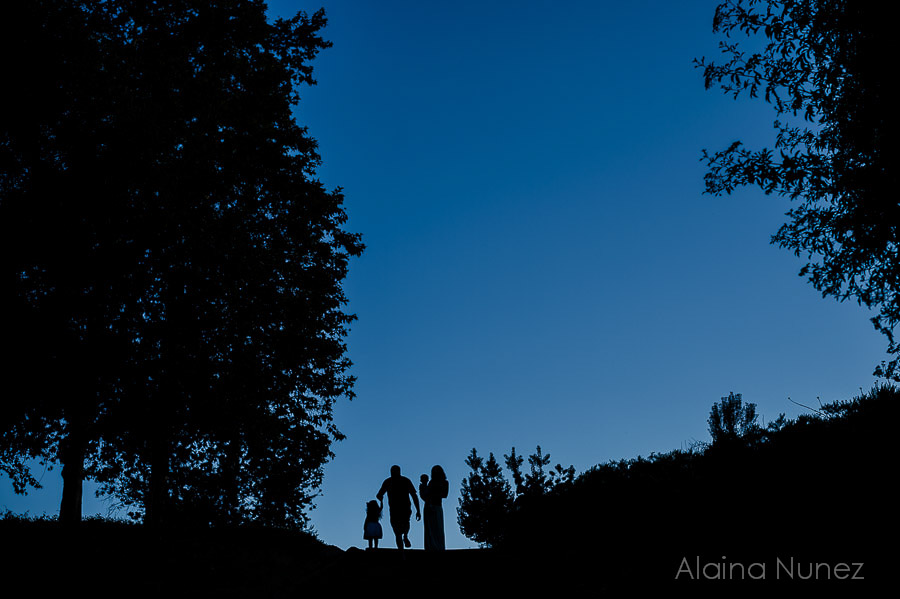 AlainaNunezPhotography.Sunset.Family-39