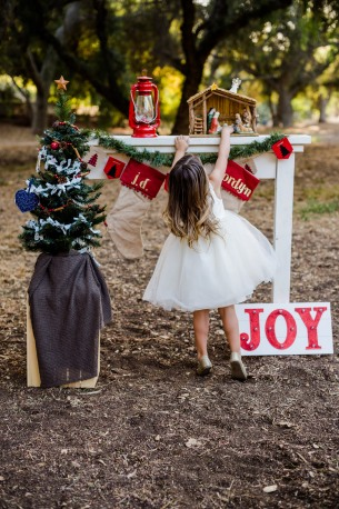 AlainaNunezPhotography.Mini Christmas Set up-1